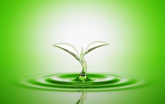 Water sprout splash