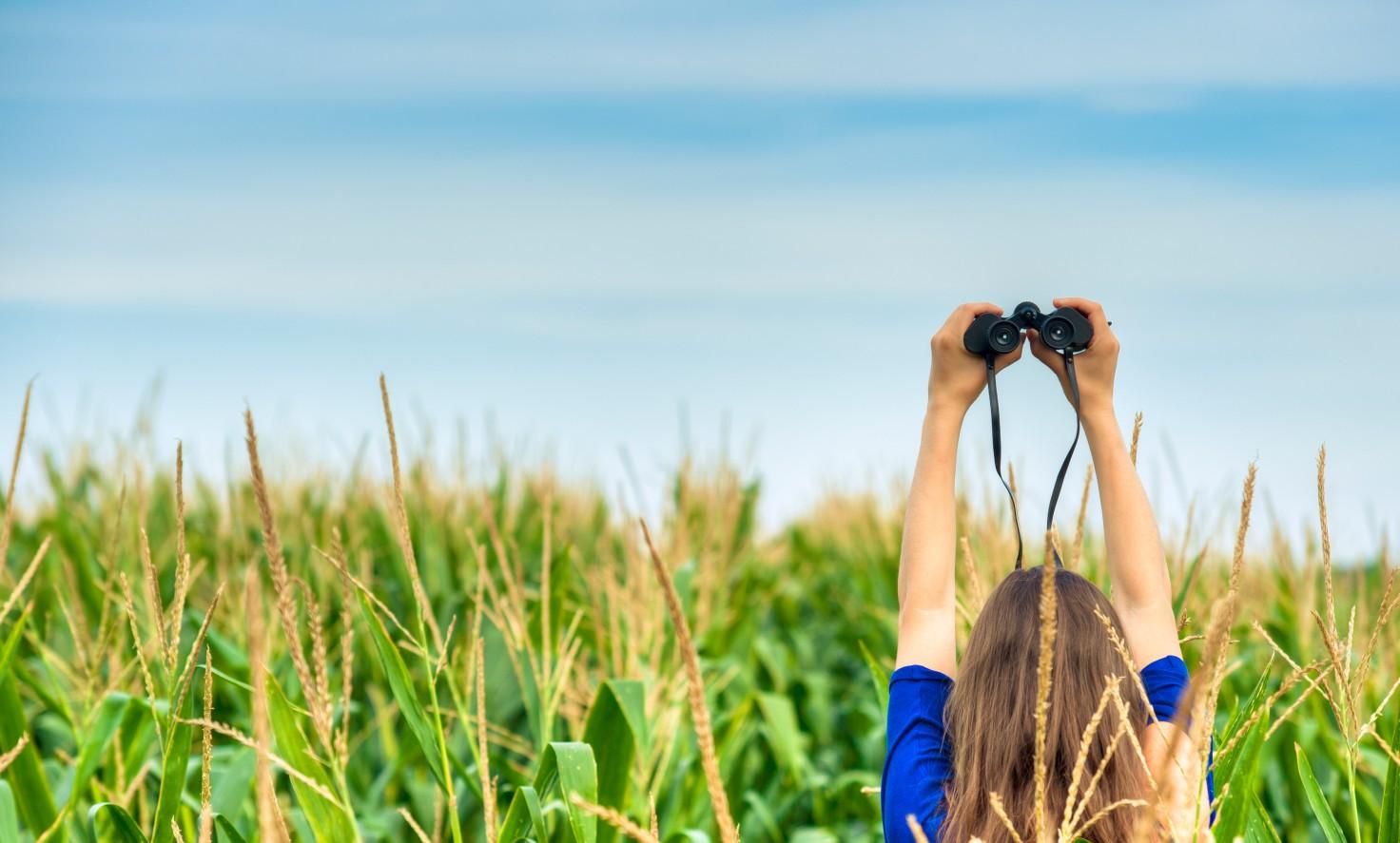 Woman Holding A Binocular In The Field
